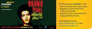 Bruno Mars-Banner Promo Web 2 (1)