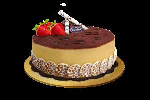 Opera Ice Cream Cake